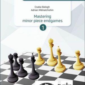The Modern Endgame Manual Vol. 2